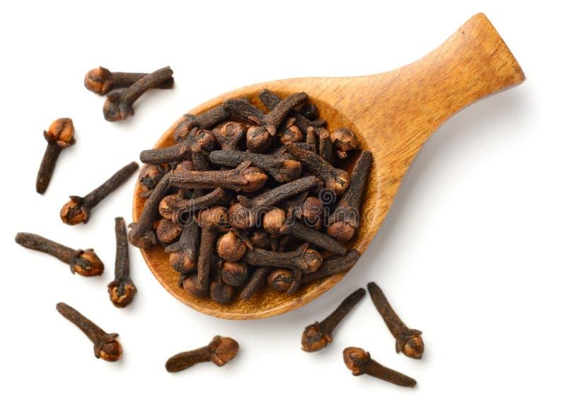 Chiodi di garofano secchi nel cucchiaio di legno, isolato sulla vista bianca e superiore fotografie stock libere da diritti