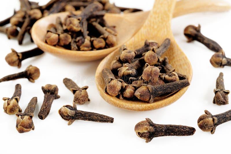 Chiodi di garofano sul cucchiaio di legno fotografie stock
