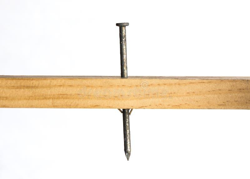 Chiodo di Galvanied attraverso legno immagine stock libera da diritti