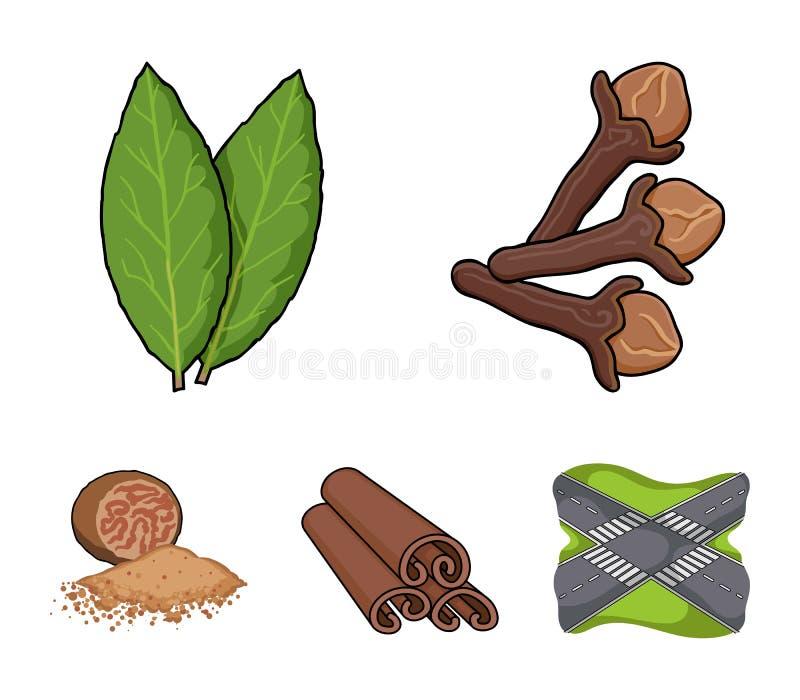Chiodo di garofano, foglia di alloro, noce moscata, cannella Le erbe e le spezie hanno messo le icone della raccolta nelle azione royalty illustrazione gratis