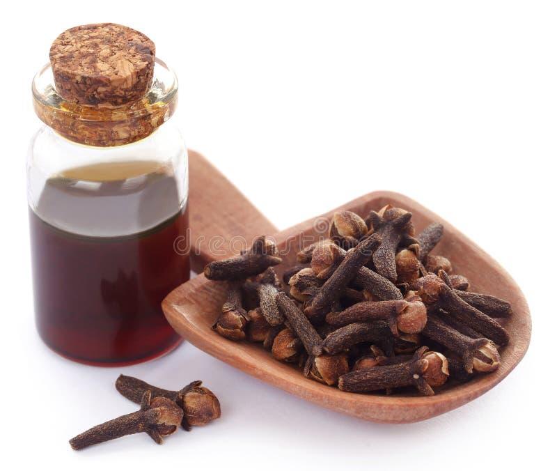 Chiodo di garofano fresco con olio in un barattolo immagine stock