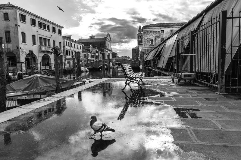 Chioggia, Venice, Italy: landscape of the old town and the canal with fishing boats and ancient buildings. Black And White Photogr. Aphy. Street Reflex stock photos