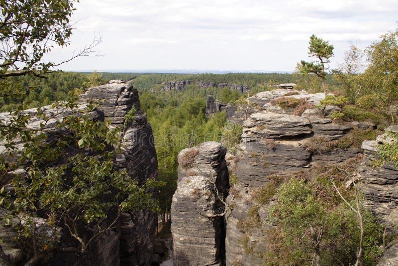 Chioma forestale con le alte rocce fotografia stock libera da diritti