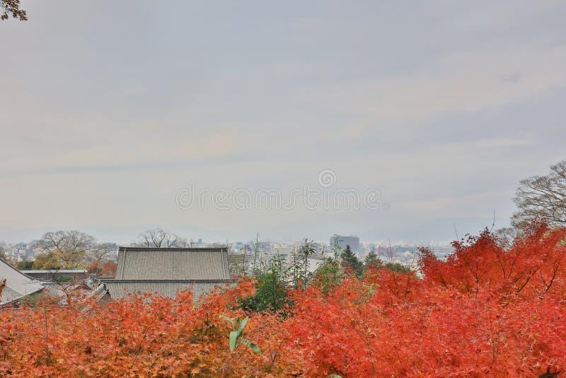 Chionen i Kyoto av den höga sikten fotografering för bildbyråer