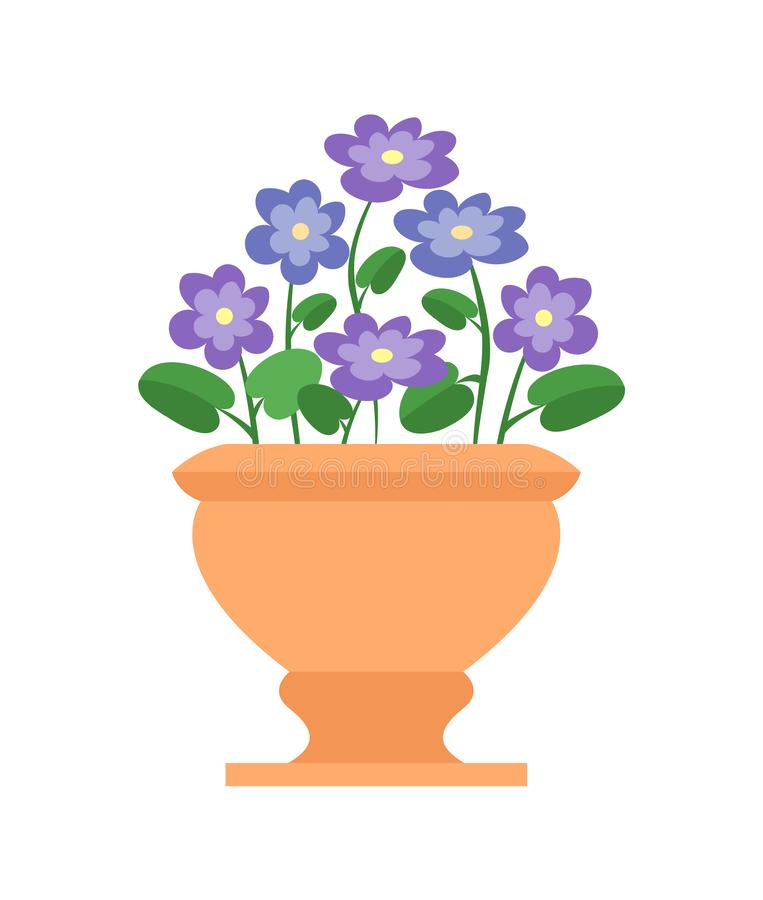 Free Chionodoxa Pot With Flowers Vector Illustration Stock Images - 127783264