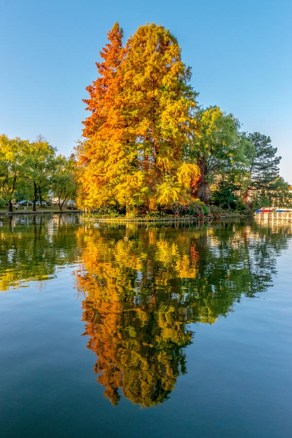 Chios Lake in the Cluj-Napoca Central Park on a beautiful autumn sunny day in Romania stock photography
