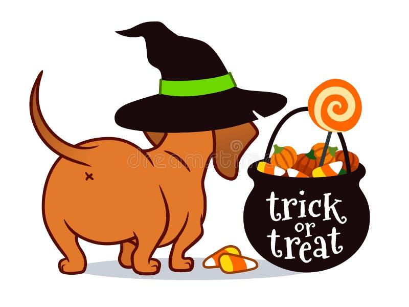 Chiot de teckel de Halloween, dans le chapeau de la sorcière avec le chaudron noir de des bonbons ou un sort rempli de bonbons au illustration libre de droits