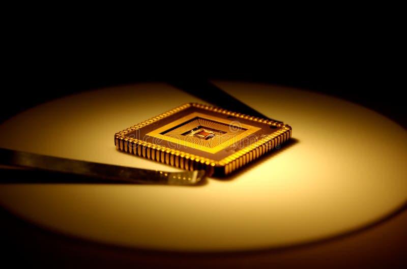 Chip royalty-vrije stock afbeelding