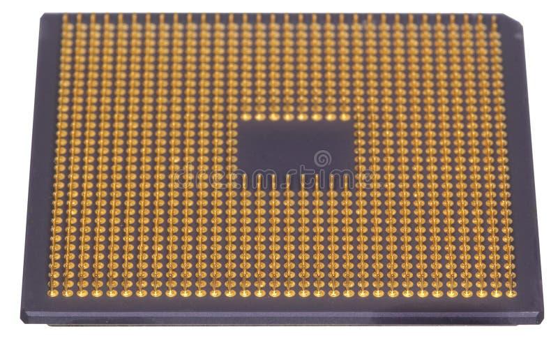 chip obrazy stock