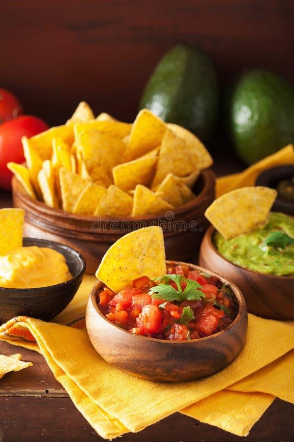 Chip di tortiglia messicani dei nacho con guacamole, salsa e formaggio d fotografia stock libera da diritti