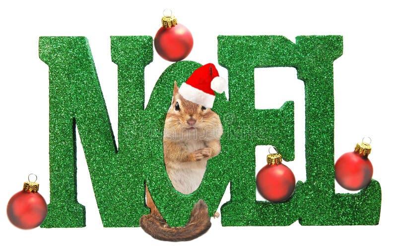 Chipmunk de la Navidad imágenes de archivo libres de regalías