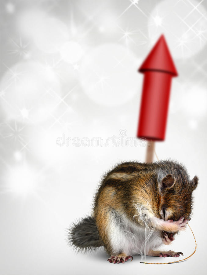 Chipmunk with fireworks, holiday background royalty free stock photo