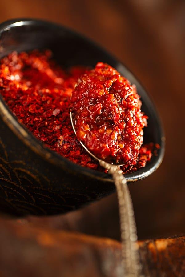 Chipotle Jalapeno geräucherte heiße chilles Paste stockbilder