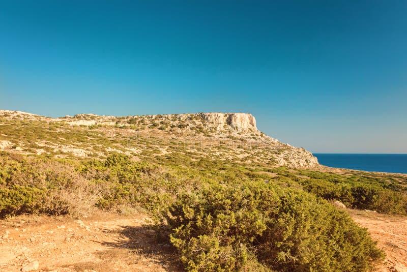 Chipre Ayia Napa, península de Greco do cabo, Forest Park nacional imagem de stock royalty free