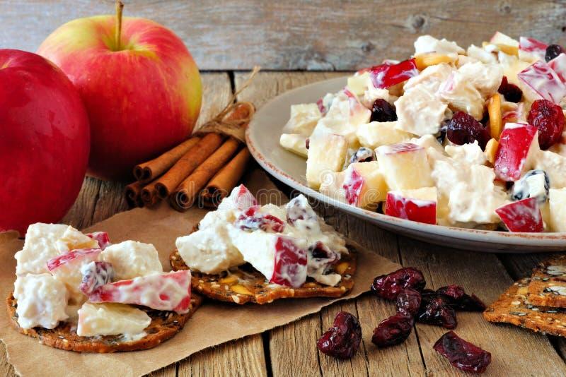 Chips mit Herbstbelag des Huhns, der Äpfel, der Nüsse und der Moosbeeren stockbilder