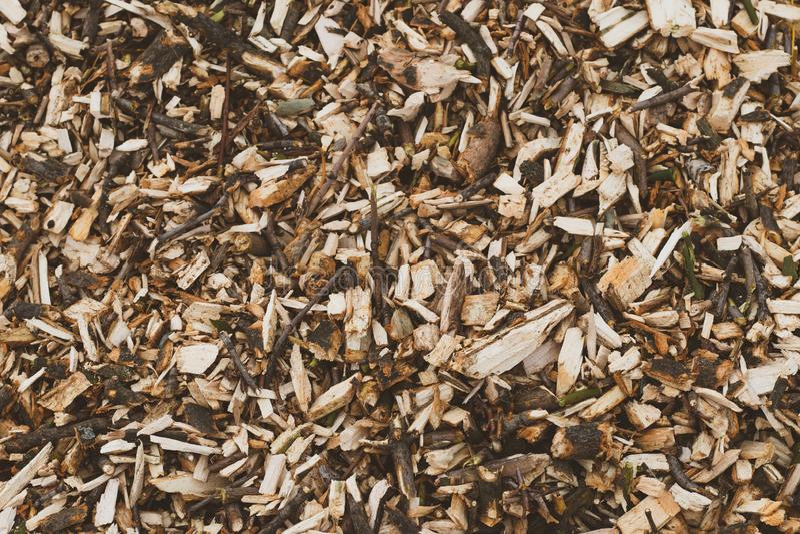 CHips Texture de madeira Madeira serrada, fundo de madeira industrial Close-up de registro Teste padrão do tronco, superfície da  imagens de stock