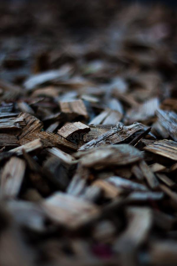 CHips Texture en bois photo stock
