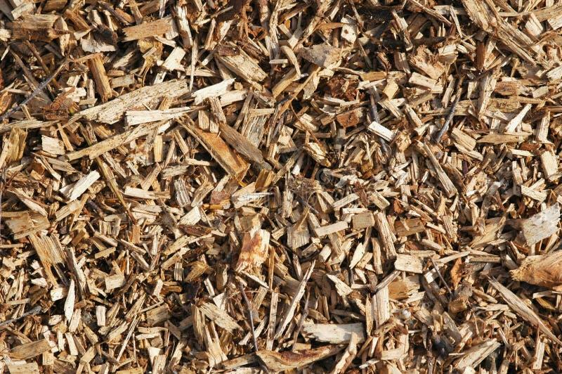 chips trä royaltyfria bilder