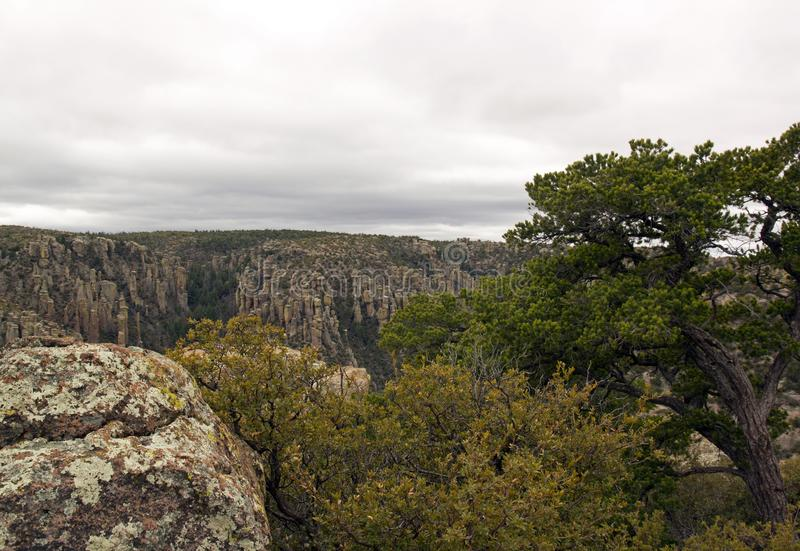 Chiricahua -亚利桑那的公园-美国 免版税图库摄影