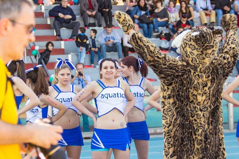 Chirliderka i tygrysi mascotte durig futbolowy mach zdjęcie stock