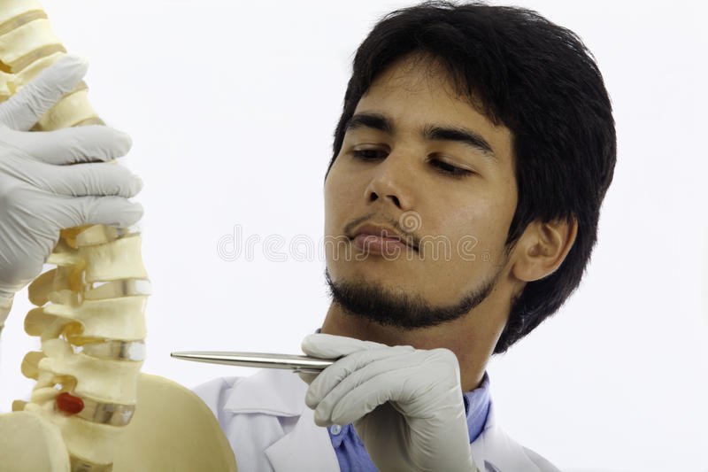 chiropractic γιατρός στοκ φωτογραφία με δικαίωμα ελεύθερης χρήσης