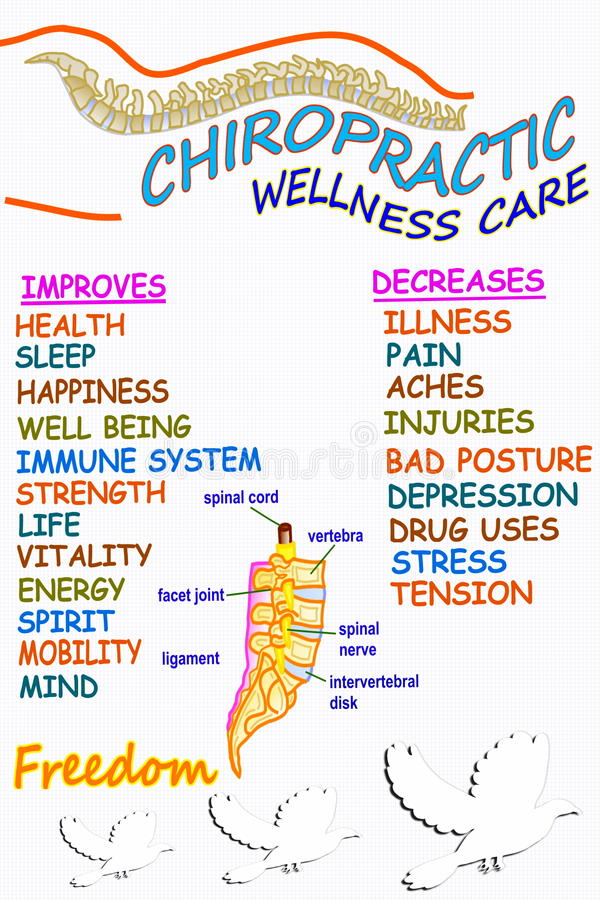 Chiropractic wellness care therapy related words. For chiropractic related work vector illustration