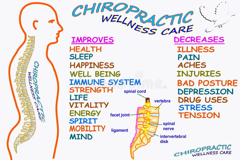 Chiropractic wellness care therapy related words. For chiropractic related work royalty free illustration