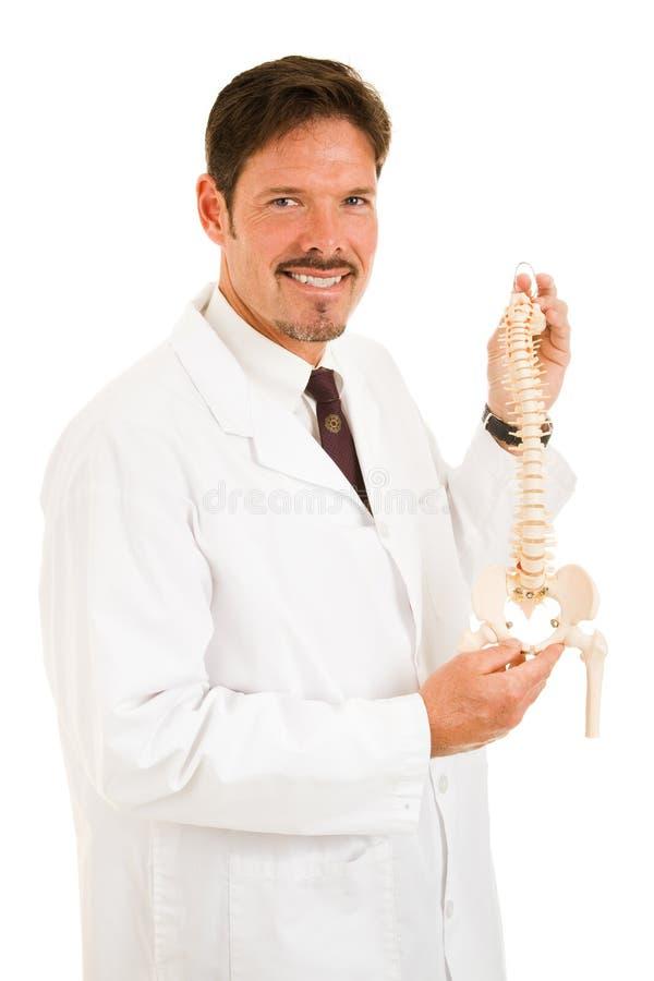 Chiropractor considerável isolado imagens de stock