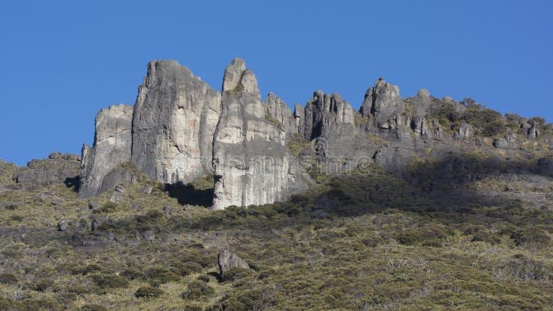 Chirripo national park royalty free stock photo