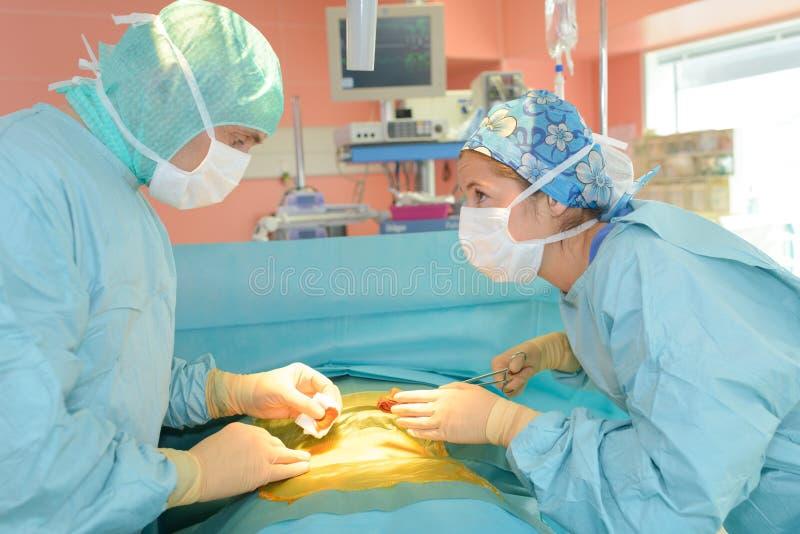 Chirurdzy opowiada w sala operacyjnej przy szpitalem obrazy royalty free