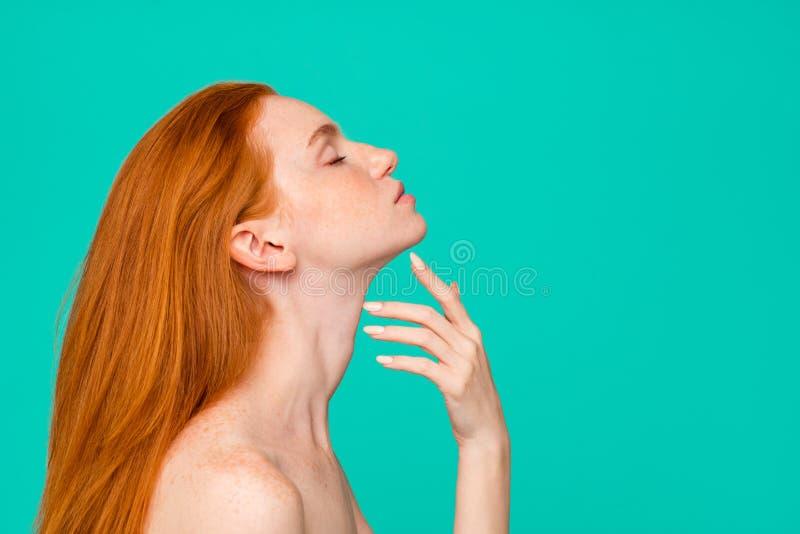 Chirurgii Plastycznej reklama Profilowy bocznego widoku portret naga postać zdjęcia royalty free