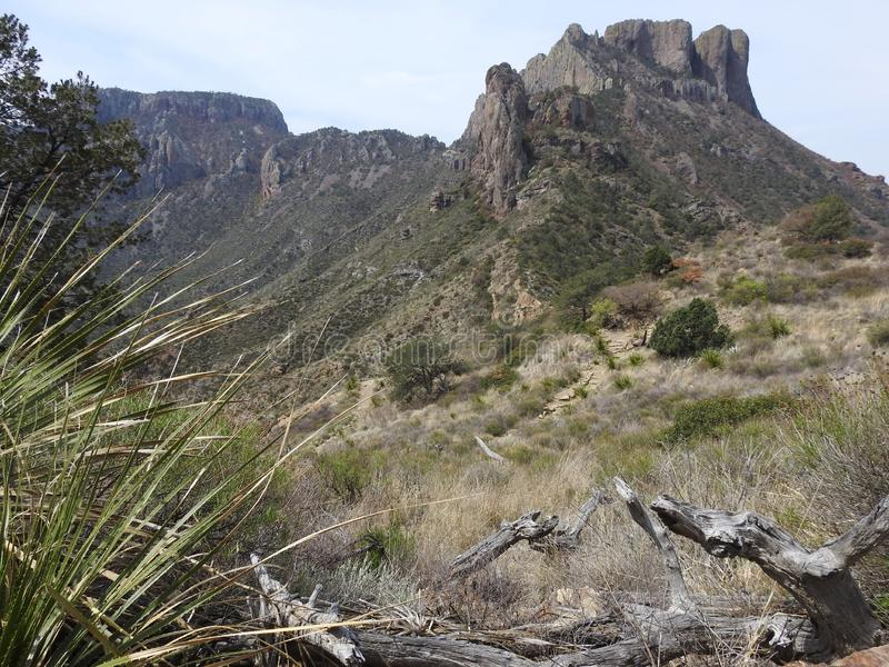 Chisos Mountains, Big Bend National Park. Chisos Mountains on the Lost Mine Trail in Big Bend National Park, Texas royalty free stock image
