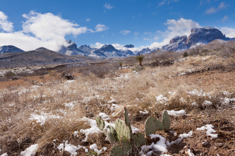 Chisos Mountains snowy desert Big Bend NP Texas. Chihuahuan desert snow and Chisos Mountains in Big Bend National Park, Texas, USA royalty free stock photography