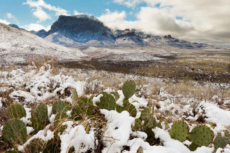 Chisos Mountains snowy desert Big Bend NP TX USA royalty free stock image