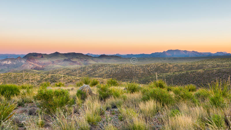 Chisos Mountains, Sotol Vista, Big Bend National Park, TX. Chisos Mountains from Sotol Vista on the Ross Maxwell Scenic Drive at sunrise, Big Bend National Park royalty free stock image