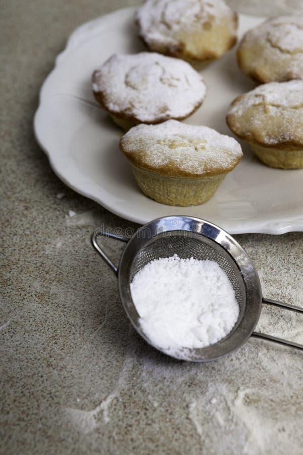 Chistmas hakt pastei met suikerglazuursuiker fijn royalty-vrije stock foto