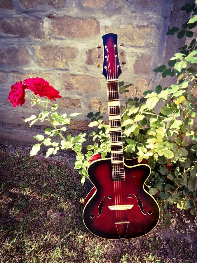Chitarra jazz e rose rosse immagine stock libera da diritti