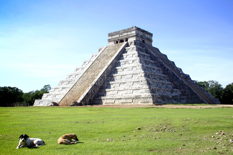 Chitchen Itza. Main pyramid of Chitchen Itza site in Yucatan, Mexico with local dogs in foreground stock photos