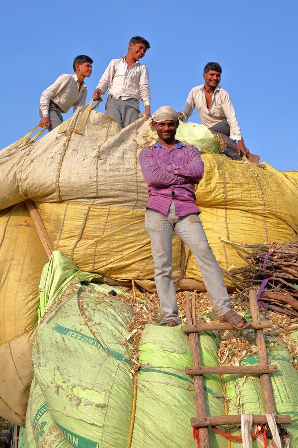 CHITTORGARH, РАДЖАСТХАН, ИНДИЯ - 13-ОЕ ДЕКАБРЯ 2017: Конец-вверх на усмехаясь фермерах нагружая stover мозоли на тележке в сельск стоковое изображение rf