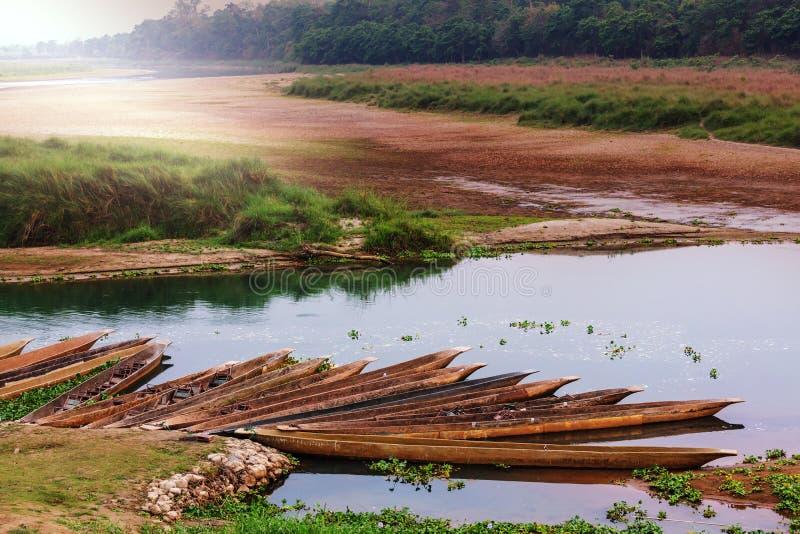 Chitwan royaltyfri fotografi