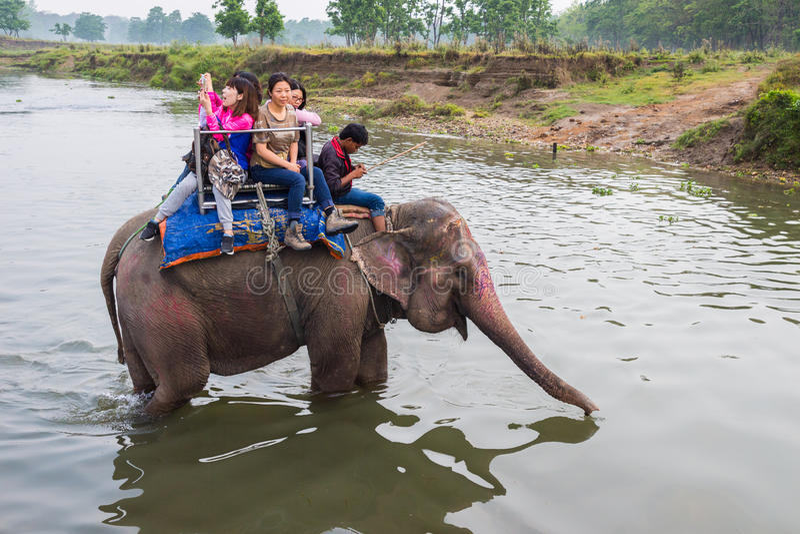 CHITWAN, NEPAL 27 DE MARÇO: Safari 27 do elefante, 2015 em Chitwan, Ne imagens de stock