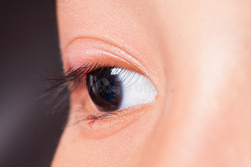 Chiuda a destra l'ascesso superiore del coperchio dell'occhio immagini stock libere da diritti