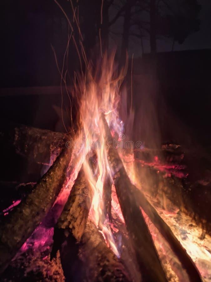 Chiuda la fiamma del fuoco di fuoco in marcia, movimento lento eccellente di legno bruciante Falò luminoso con le belle scintille fotografia stock