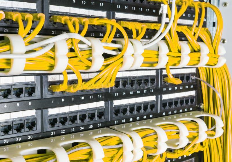 Chiuda su dei cavi gialli della rete collegati al commutatore fotografia stock libera da diritti