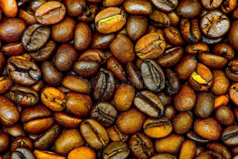 Chiuda su dei chicchi di caff? arrostiti immagine stock