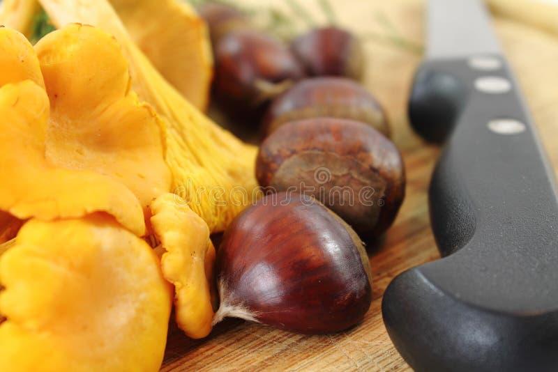 Chiuda su dei funghi raccolti freschi galletto e castagne del vegano organico fotografie stock