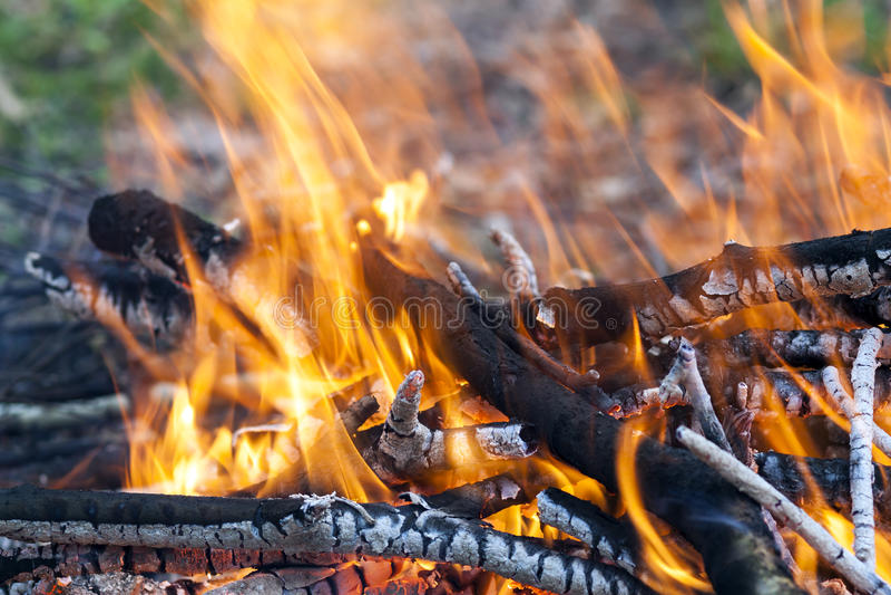 Chiuda su del carbone di legno del fuoco bruciante caldo fotografia stock libera da diritti