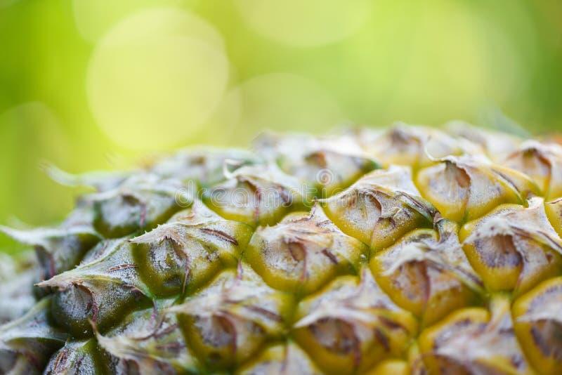 Chiuda su del fondo della sfuocatura della pelle dell'ananas di struttura della frutta dell'ananas e di verde della natura immagini stock