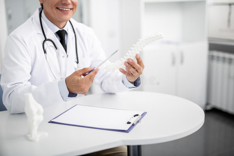Chiuda su del modello spinale nelle mani del medico di famiglia fotografie stock