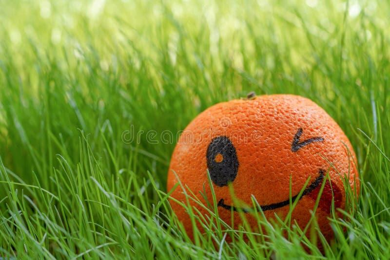 Chiuda su dell'arancia con il fronte winky dipinto di emoji che mette sull'erba verde fotografie stock libere da diritti